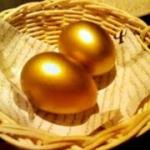 「ガチョウと黄金の卵」のお話!